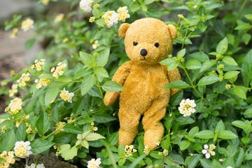 花の中のテディベア