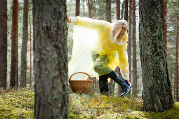 the woman is picking mushrooms