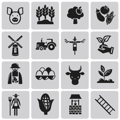 Vector Agriculture and Farming black icon set2. Illustration eps