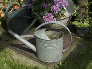 Alte Gießkanne in einem Garten in Löhne im Kreis Herford