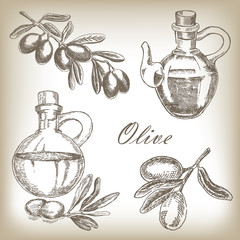 Hand drawn olive set. Vector illustration in sketch style