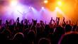Leinwanddruck Bild - Jubelnde Konzertbesucher auf Rock-Konzert