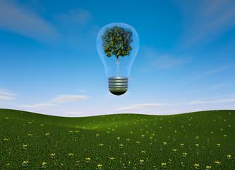 Ampoule et arbre