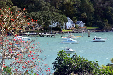 Landscape view of Mill bay - New Zealand