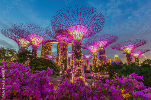 Foto op Canvas Singapore Night view of The Supertree Grove at Gardens by the Bay