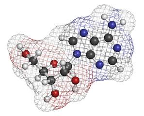 Adenosine (Ado) purine nucleoside molecule.