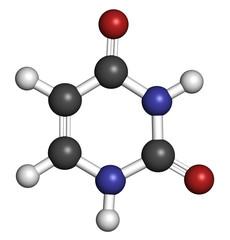 Uracil (U) nucleobase molecule. Present in ribonucleic acid, RNA