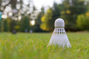 Detailed closeup of a badminton
