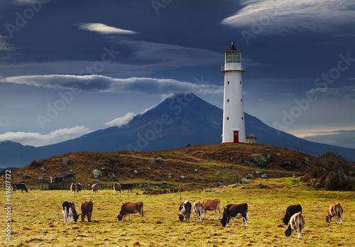 Cape Egmont Lighthouse, New Zealand - 69607372
