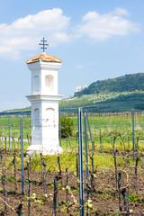 God's torture with vineyard, Palava, Czech Republic