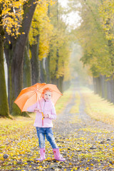 little girl with umbrella in autumnal alley