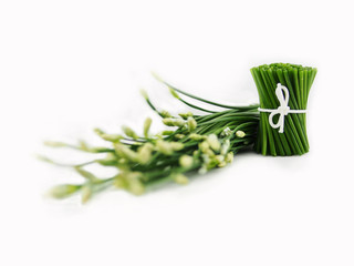 Chinese chives flowers on white