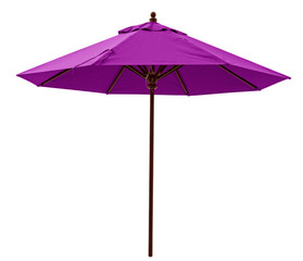 Purple beach umbrella