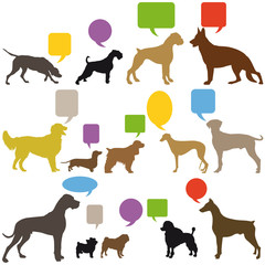 Hunde Gebärdensprache
