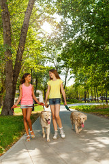 Two teenage girl walk dogs and talk