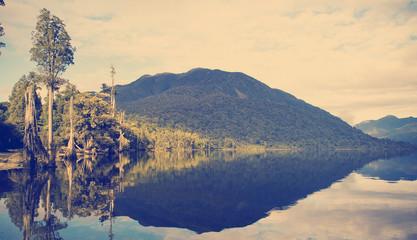 Jungle Lake Instagram Style