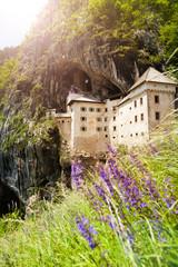 Predjama castle and wild flowers