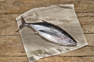 Albacore on rustic wooden