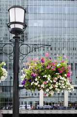 Flower basket and modern architecture.