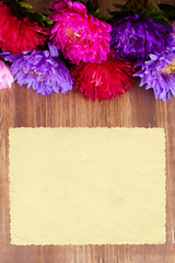Freshly cut asters on wooden background