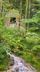 Einsame Waldhütte