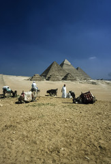 Egypt, Cairo, view of the Pyramids - FILM SCAN