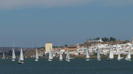 Many Sailing Yachts Moving in the Bay, Portugal
