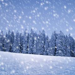 Schneeflocken vor Wald