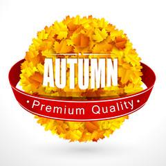 Autumn label. Vector
