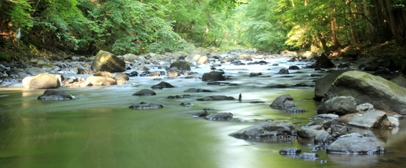 Bergbach fließt durch verwunschens Tal
