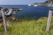 icebergs in harbor, Twillingate Island, Newfoundland