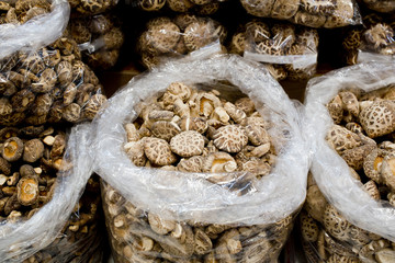 collection of dried shiitake mushrooms