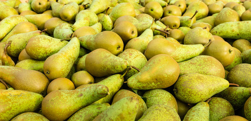 Closeup of just picked pears