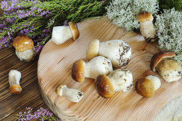 Ceps on a cutting board