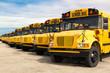 school buses - 69638396