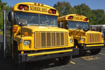 school buses
