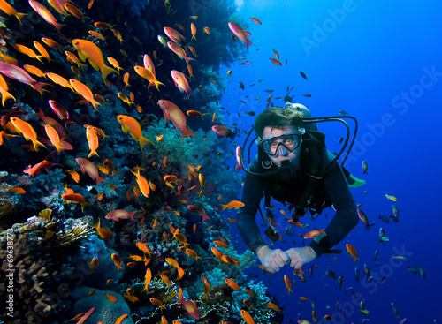Diver swims through tropical fish on coral reef