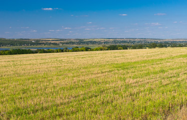 Ukrainian agricultural landscape with mowed crop field