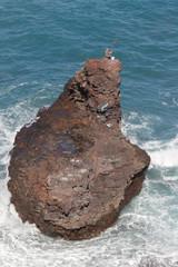 Der Angler auf Teneriffa
