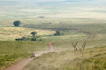 Jeep along a trail in Ngorongoro Conservation Area
