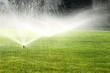 garden sprinkler on the green lawn - 69643501