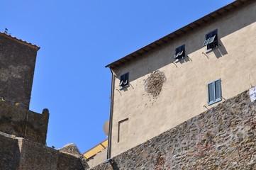 piccione nel muro