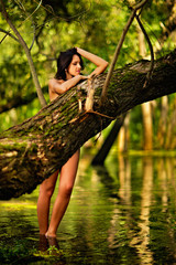 Young naked beautiful woman standing in water in rainforest