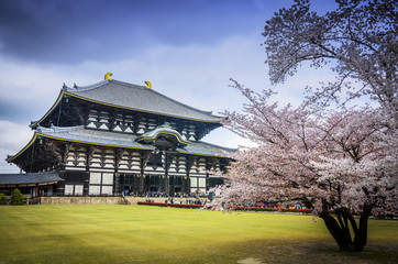 Todaiji's main hall,the Daibutsuden (Big Buddha Hall)