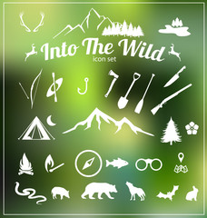 Into the wild, Wilderness icon set vector