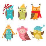Fototapety Winter owls