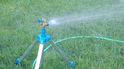 Garden irrigation system watering lawn.