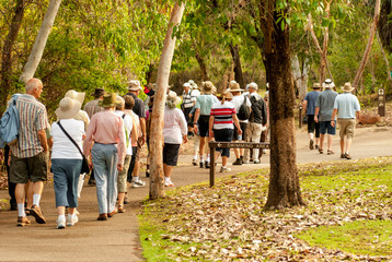 group of old and healty people walking in the nature