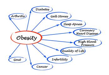 Diagram of Obesity