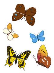 set of bright butterflies - vector